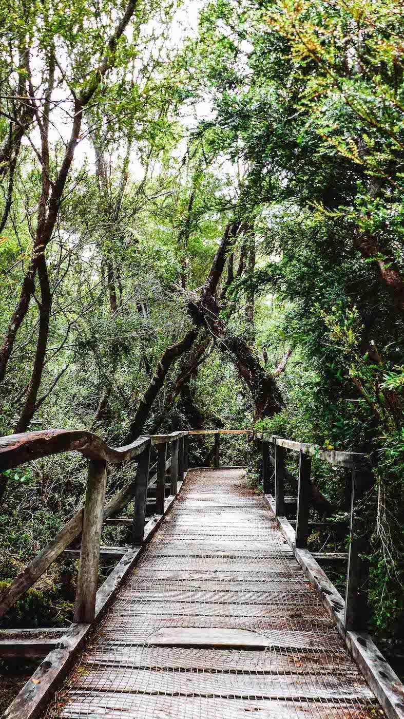 Ponton de bois Parc National de Chiloé