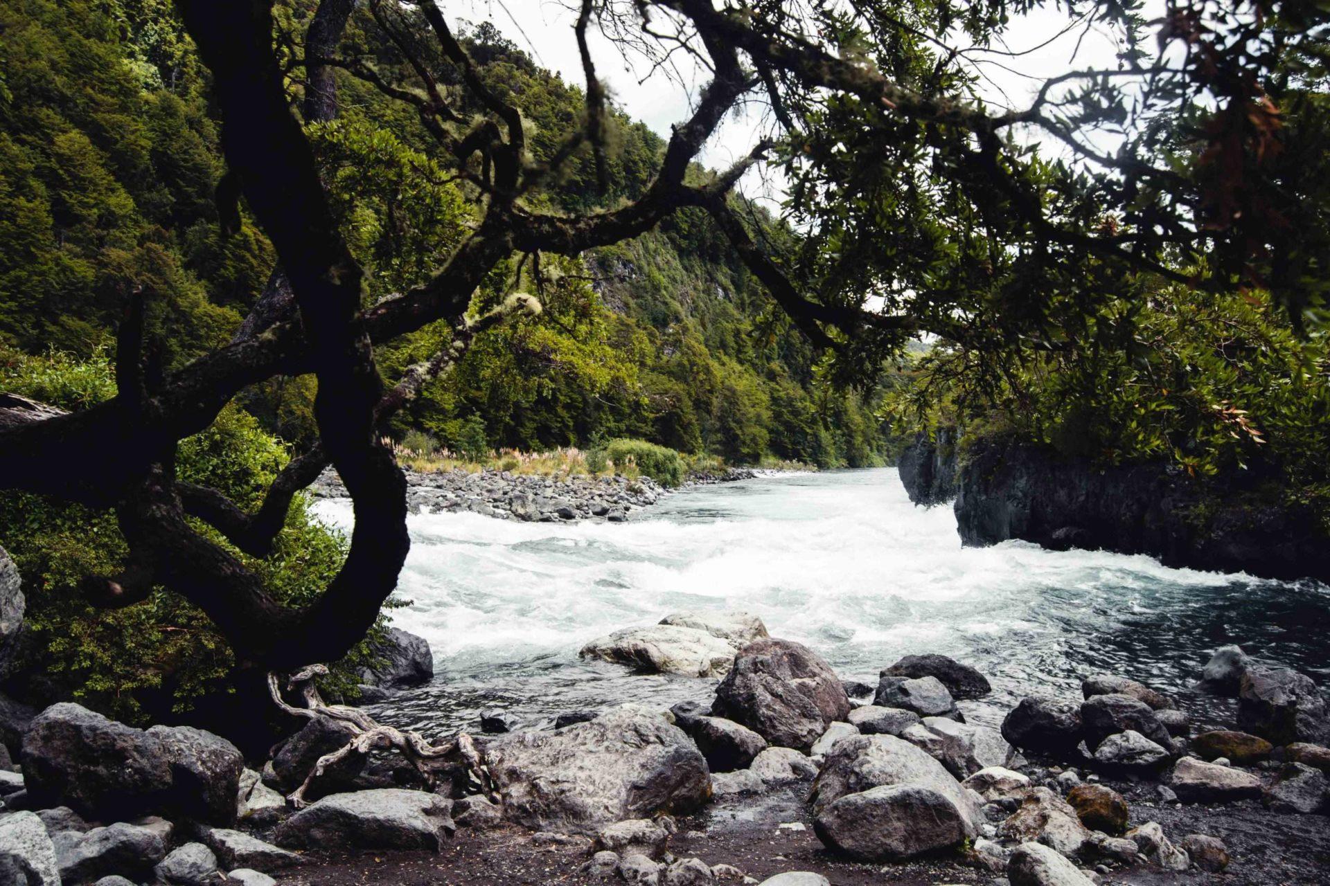 Rivière Pétrohué